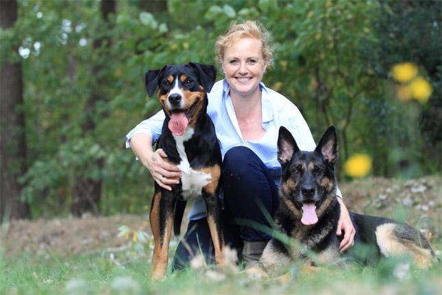 Büro- und Therapiehund